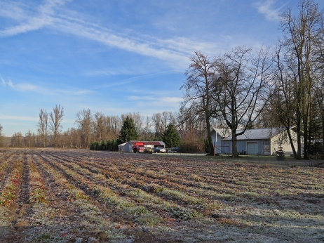 Matlock Farm-12-3-14