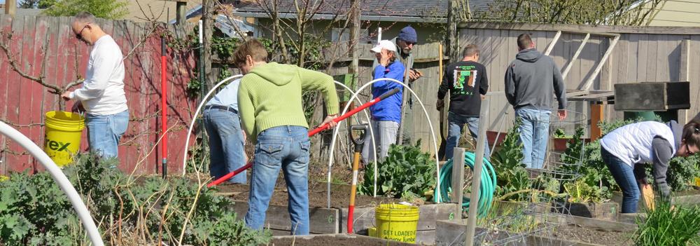 Photo of community garden work party