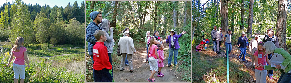 Photos of Sept. 27 walk at Sehmel Homestead Park