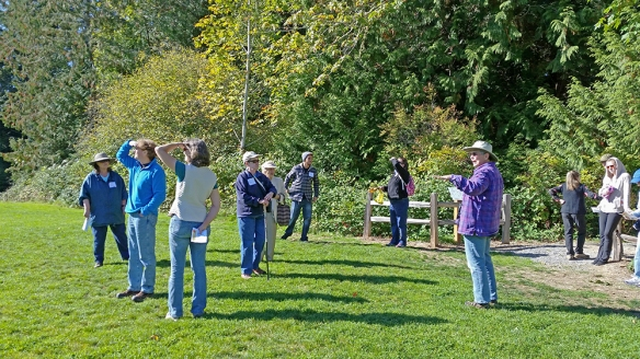 Photo of walking tour at Sehmel Homestead Park